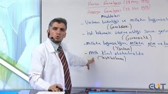 10.Sınıf Tarih Görüntülü Eğitim Seti