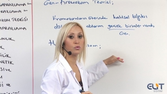 11.Sınıf Biyoloji Görüntülü Eğitim Seti