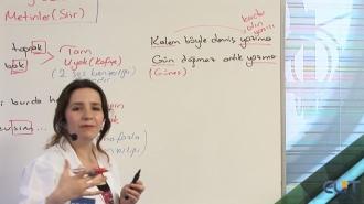 9.Sınıf Edebiyat Görüntülü Eğitim Seti