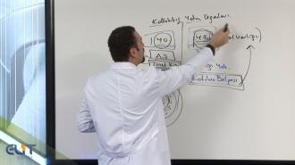 Açıköğretim Sermaye Piyasaları ve Finansal Kurumlar Soru Bankası
