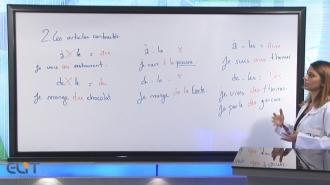 Fransızca Tüm Seviyeler Görüntülü Eğitim Seti (Kitap Hediyeli)