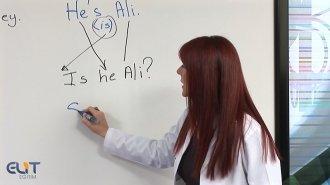 Genel İngilizce Tüm Seviyeler Görüntülü Eğitim Seti