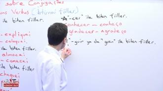 Portekizce Tüm Seviyeler Görüntülü Eğitim Seti