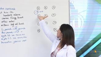 10.Sınıf Fizik Görüntülü Eğitim Seti
