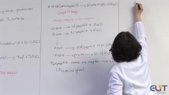 9.Sınıf Biyoloji Görüntülü Eğitim Seti