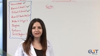 Açık Lise Dil ve Anlatım-4 Görüntülü Eğitim Seti
