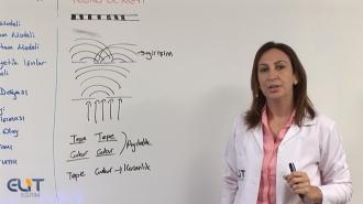 Açık Lise Kimya-2 Görüntülü Eğitim Seti
