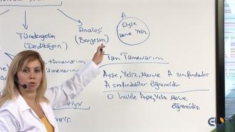 Açık Lise Mantık-1 ve Mantık-2 Görüntülü Eğitim Seti