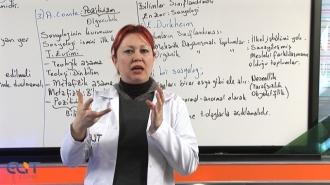 Açık Lise Sosyoloji Tüm Dönemler Eğitim Seti