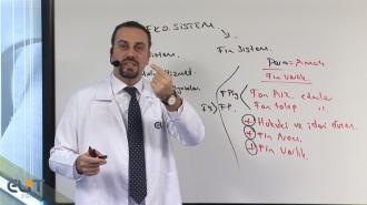 Açıköğretim Sermaye Piyasaları ve Finansal Kurumlar Eğitim Seti