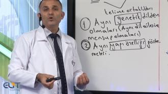 Açıköğretim Türk Dili-1 Eğitim Seti