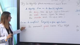 Fransızca Eğitim Seti (Fransızca Öğrenmek)