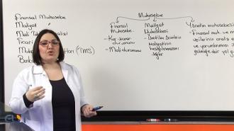 KPSS-A Finansal Muhasebe Görüntülü Eğitim Seti
