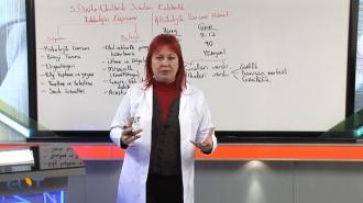 KPSS Rehberlik Görüntülü Eğitim Seti