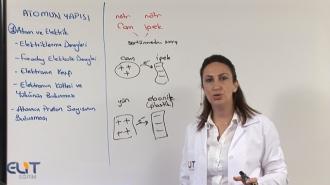 YKS Sayısal Fizik-Kimya-Biyoloji-Matematik Eğitim Seti