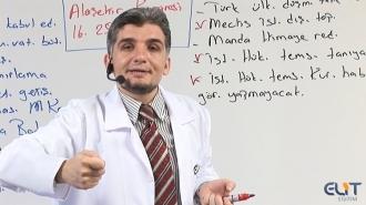 (AYT) YKS Tarih Görüntülü Eğitim Seti