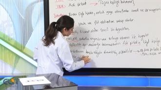 SMMM Staja Giriş Ticaret Hukuku Görüntülü Eğitim Seti
