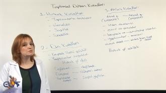 SMMM Yeterlilik Temel Hukuk ve Borçlar Hukuku Görüntülü Eğitim Seti